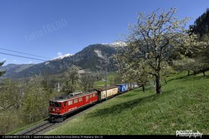 1489934021_Primavera-411-20150424-Albula-1600width
