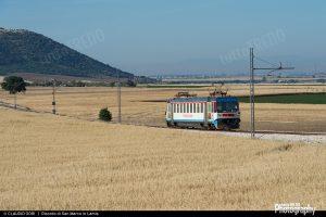 1490379466_FG-Ale080_001-San-Marco-in-Lamis-2015-05-30-ClaudioGori@-DSC_0698-1600width