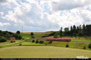 1493150476_DB_DeutscheBahn-Ferrovia_Neustadt_Doneauschingen-BR611_xxx-Treno_Regionale_Neustadt_Unadingen-2016-07-18-FrancescaSommavilla