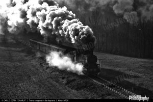 1498736166_Treno-1920width