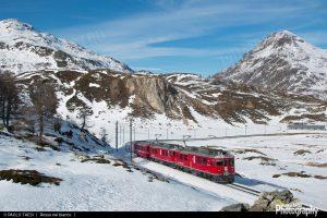 1504189591_RhB_ABe_4-4_55_Bernina_treno1625_031216-1920width